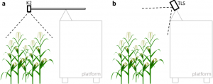 Schematic drawing of frontal view on field experiment mountings. (a) 3D camera mounting with camera in nadir perspective over maize field, (b) TLS mounting with tilted scanner to account for nadir field of view restriction.