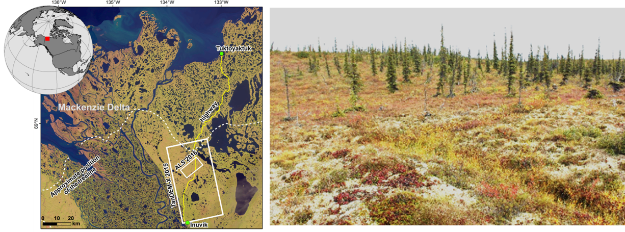Study region in the Canadian Arctic tundra with sparse tree cover (Antonoval et al. 2019))