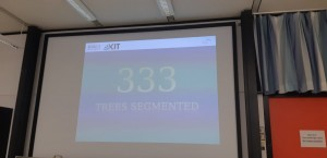 In the end, 333 trees were segmented