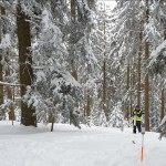3D Winter Wonterland – Multi-method acquisition for snow process research
